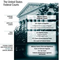 Federal Courts - Overview of Structure.jpg